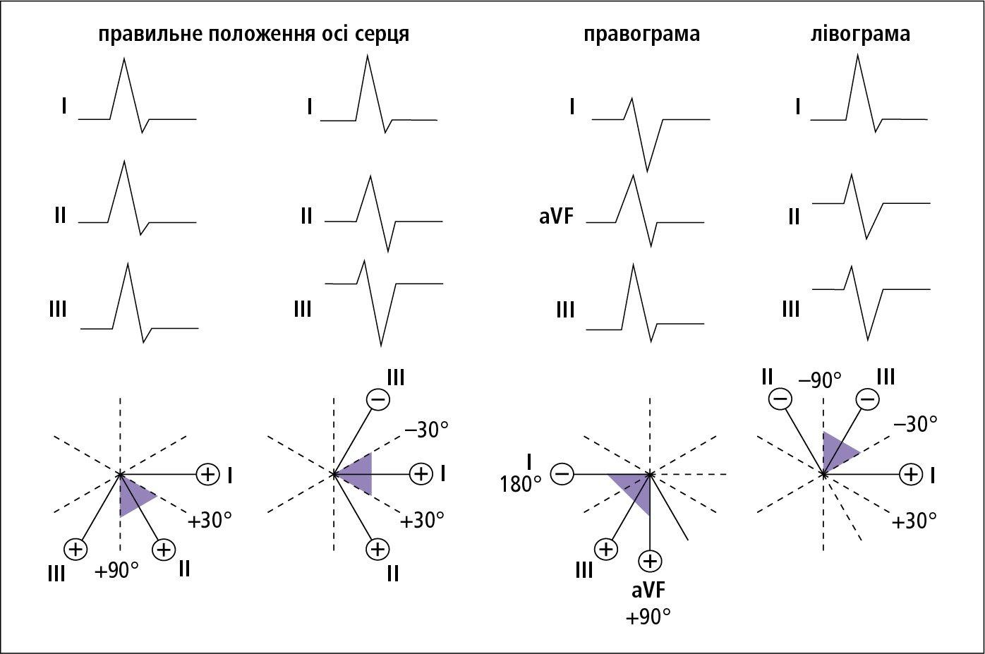kardiovaskularnih simptoma hipertenzija kako da se aktovegin hipertenzije