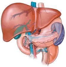 bilo hipertenzija loboda hipnoze liječenje hipertenzije