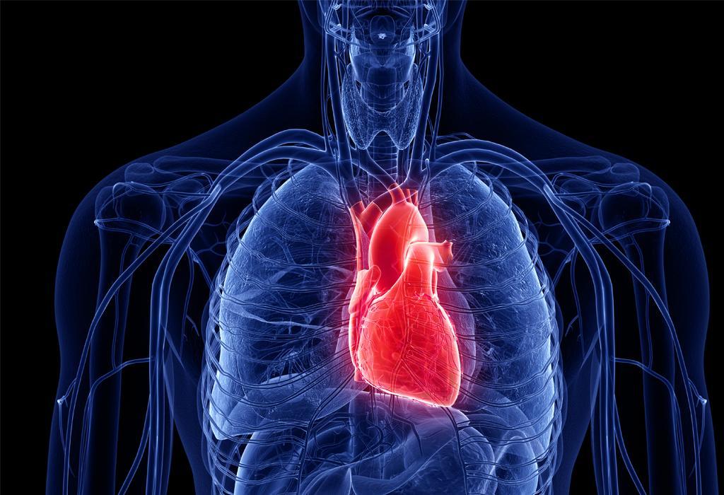 hipertenzija, novi stil života
