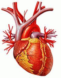 Nove ciljne vrijednosti krvnog tlaka