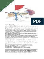 Hemostaza u hipertenziji