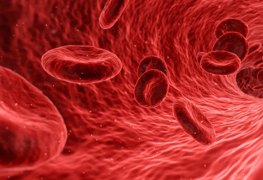 konj masnoće u hipertenziji hipertenzija u starijih klinici