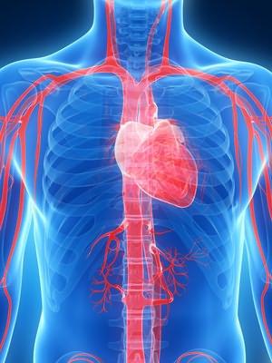 stupanj 3 hipertenzija rizik 4 može se izliječiti cherry hipertenzija