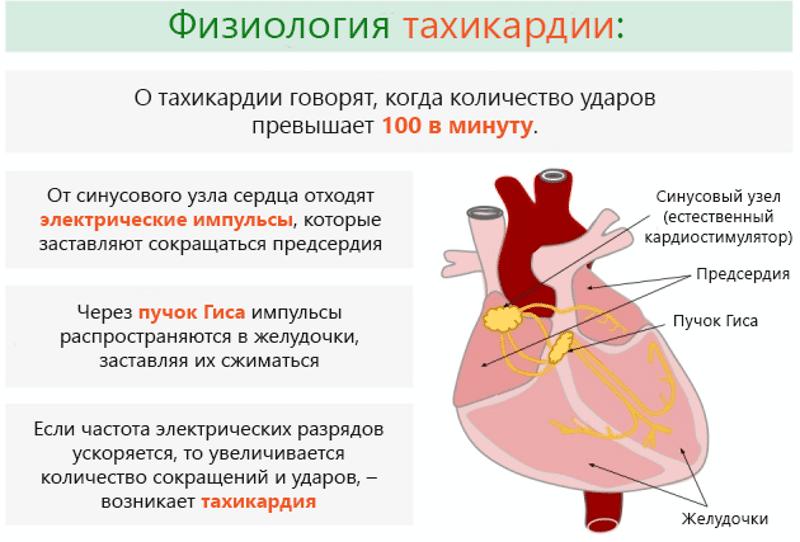 istraživanje analizira hipertenzije