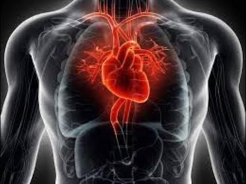 hipertenzija cbc začini i hipertenzija, koji može biti