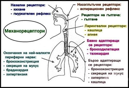 hipertenzija hipertenzija forum