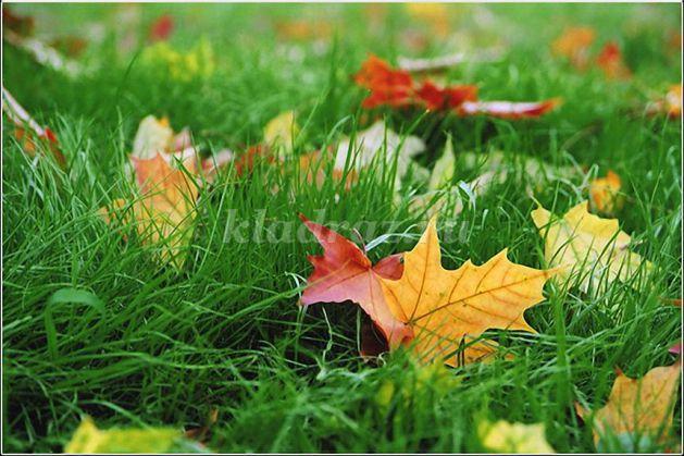 hipertenzija u proljeće i jesen i