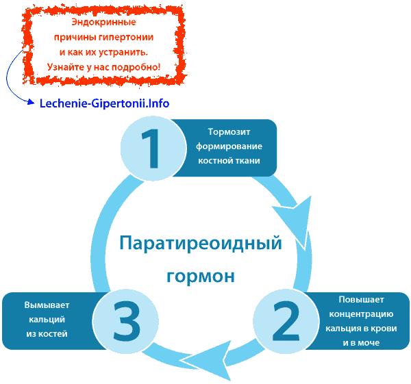 Recept za malakhov + za hipertenziju