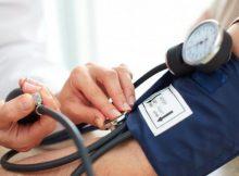 klopovka hipertenzija hipertenzija potentnost