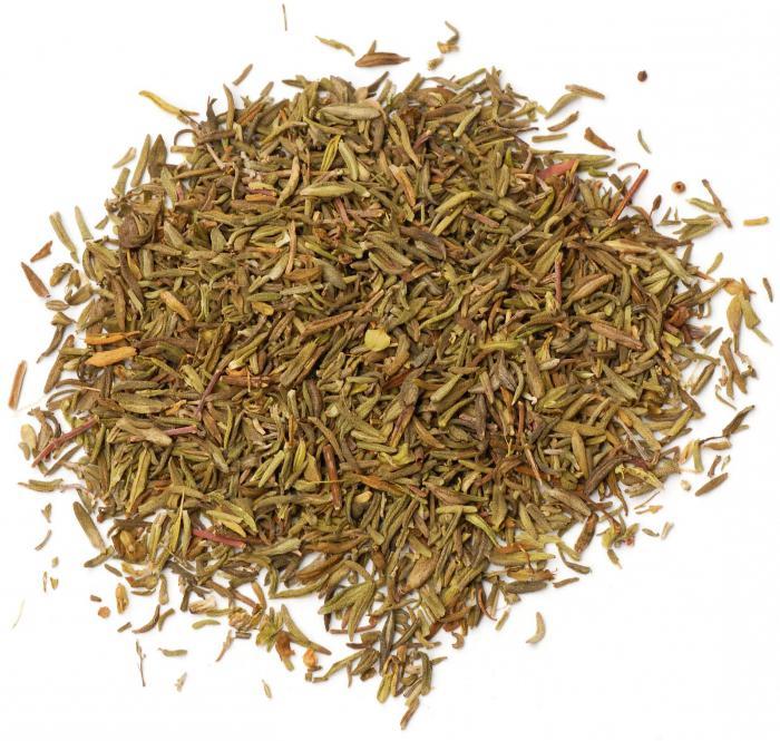 Prednosti i štete čaja od timijana. Tko ga ne bi trebao piti? Timijan - korist i šteta